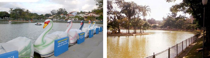 Lago dos Patos Guarulhos Fotos
