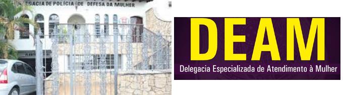 Delegacia Da Mulher Guarulhos