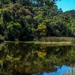 Parque Nacional da Cantareira